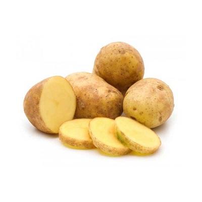 Купить Семенной картофель Гала