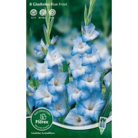 Гладиолус крупноцветковый Блу Фрост