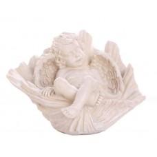 Ангел в ракушке
