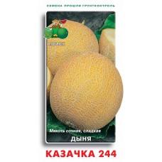 Дыня Казачка 244