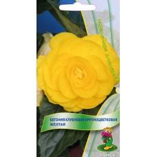 Бегония клубневая крупноцветковая Желтая