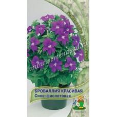 Броваллия красивая Сине-Фиолетовая