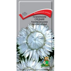 Гелихризум Королевский размер серебристо-белый