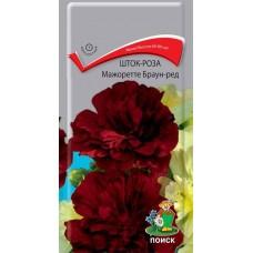 Шток-роза Мажоретте Браун-Ред