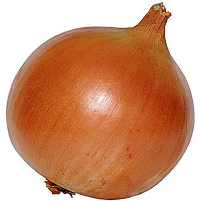 картинки луковицы лука белоснежка семь