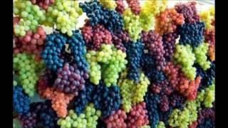 второе знакомство с виноградом АГАТ ДОНСКОЙ